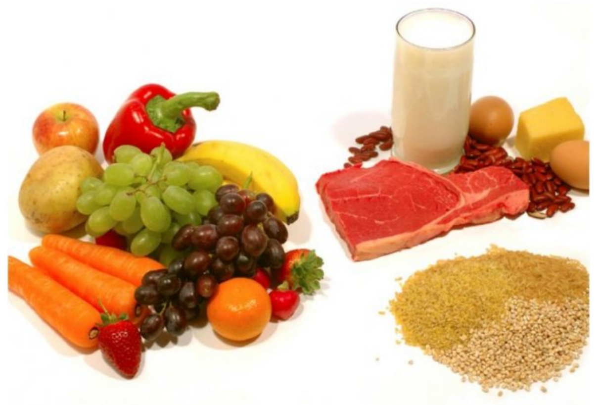 Какую роль играют белки, жиры и углеводы в диете