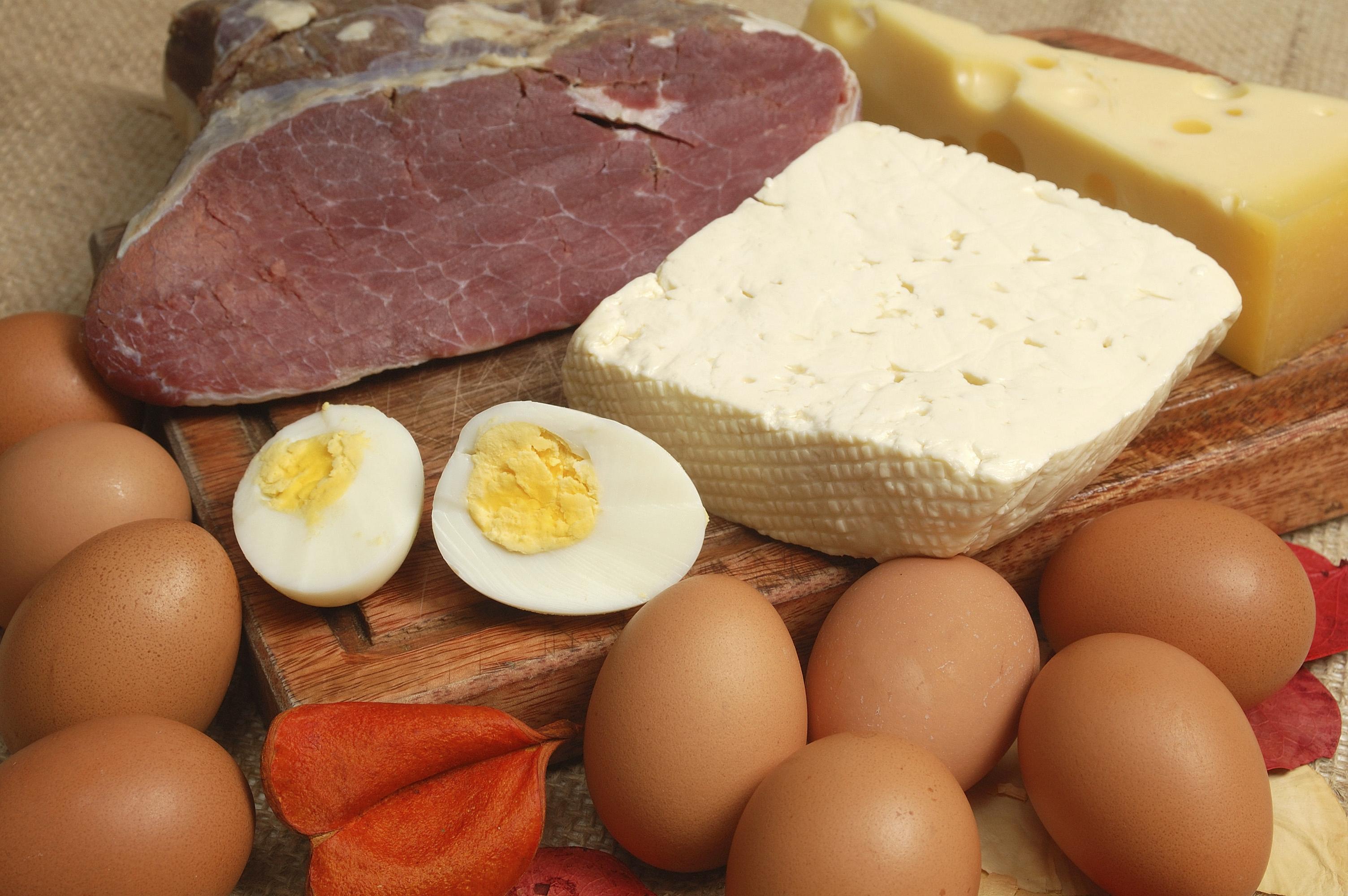 Белковая диета для похудения: общий рацион