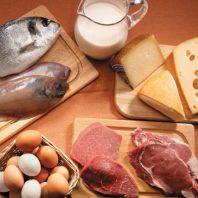меню белковая диета сжигания жира