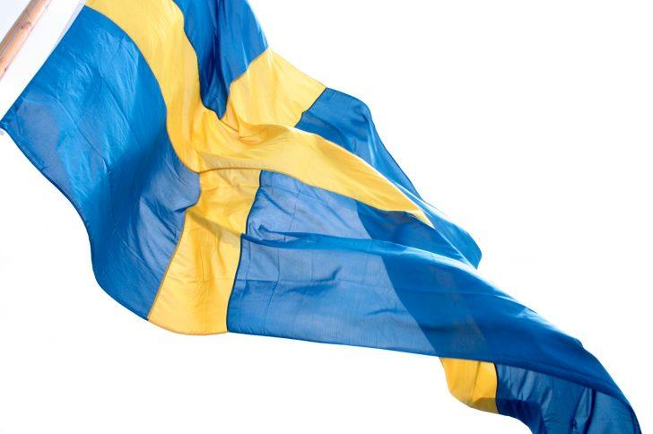 Шведская диета — худеем без проблем