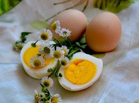 Яичная диета – польза или вред?
