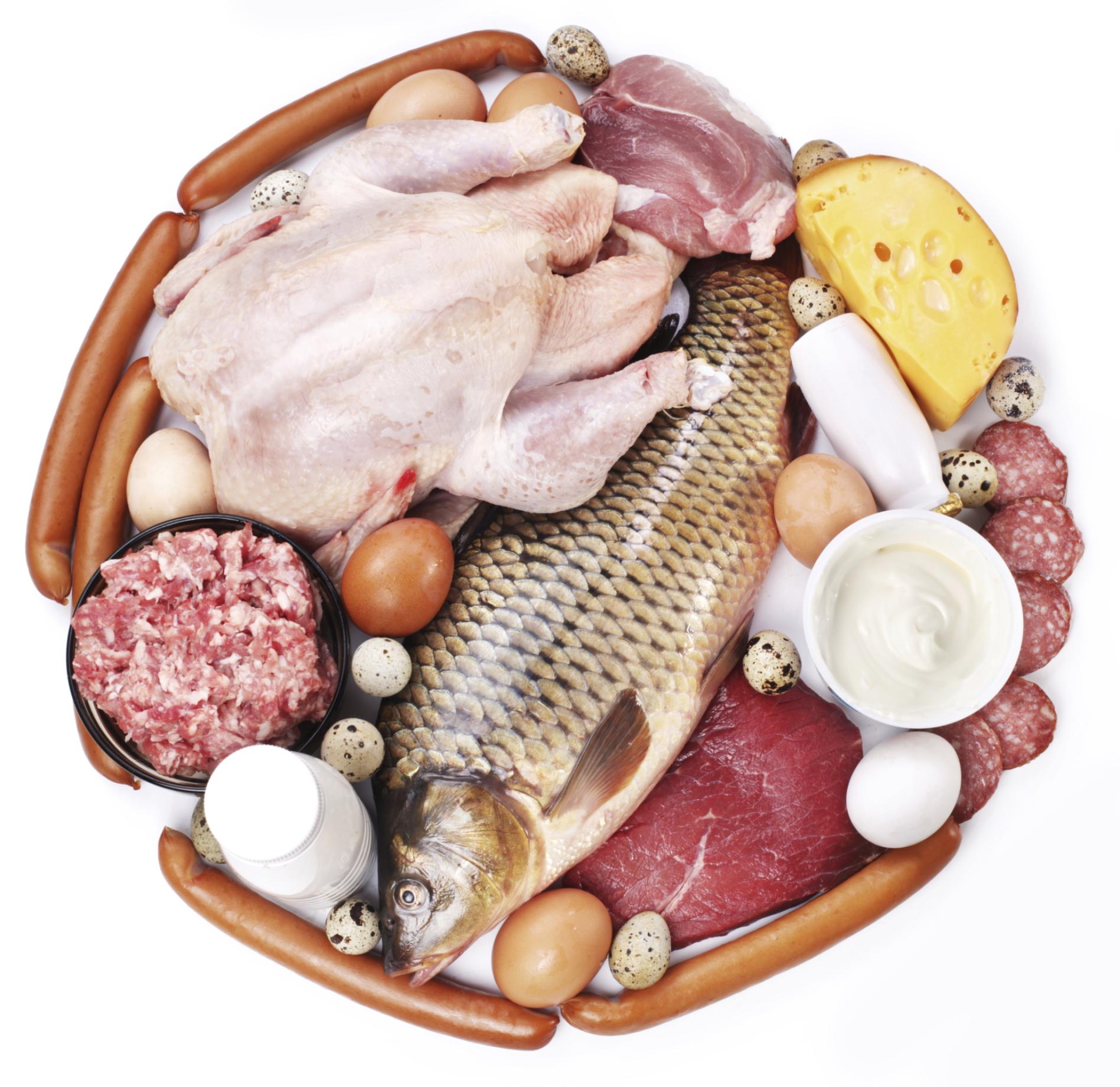 Что входит в белковую пищу?