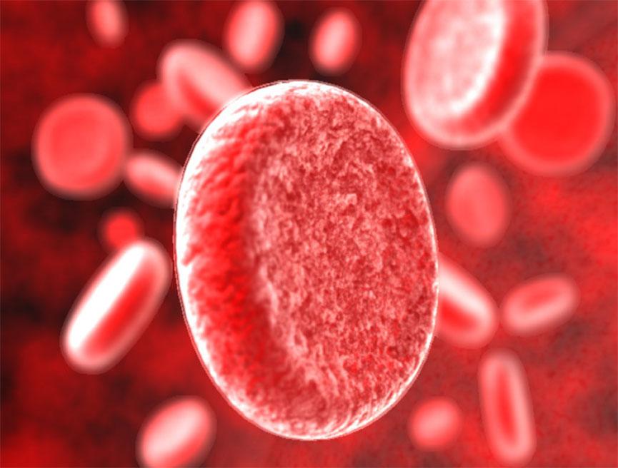 Диета для 3 группы крови: худеем правильно