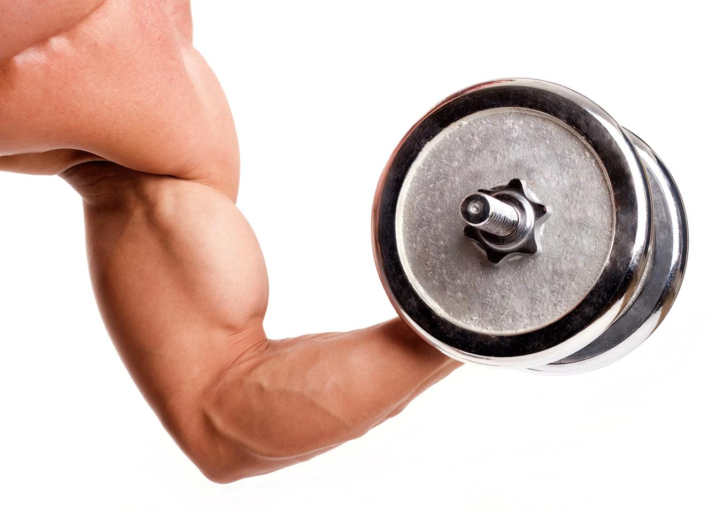 Ключевые моменты диеты для набора мышечной массы