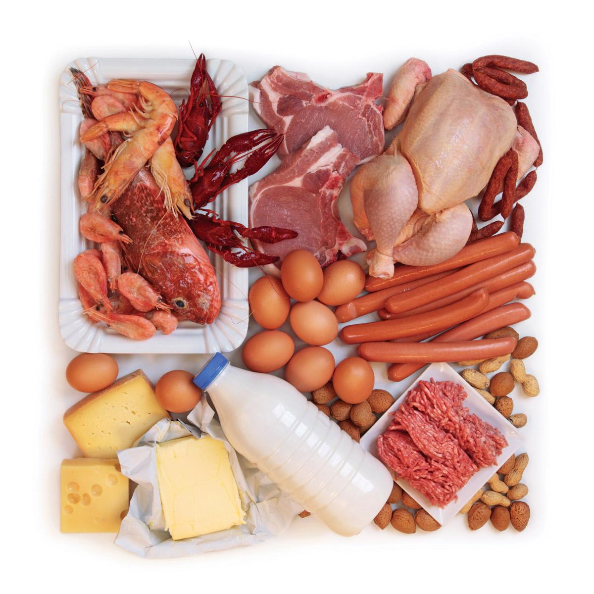 Таблица белковой пищи