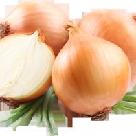Жиросжигающая диета луковый суп для похудения