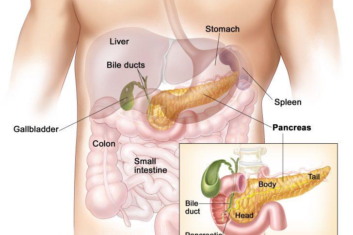 Диета при остром панкреатите и заболевании желудочной системы