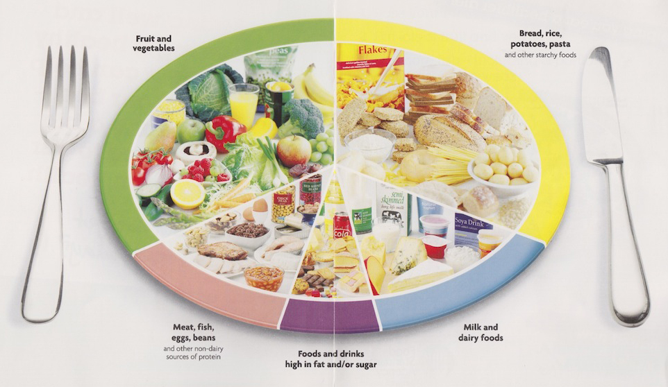 Система питания по Шелтону
