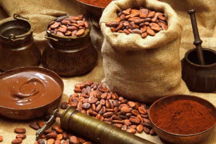 Какао для волос: свойства, применение