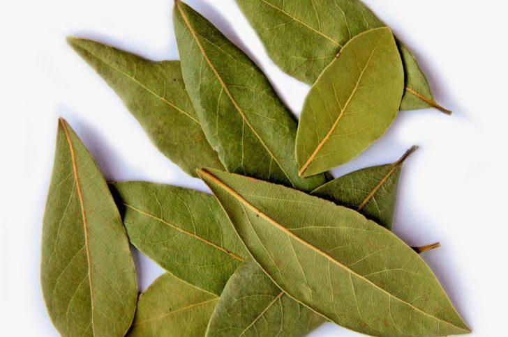 Чистка суставов от солей лавровым листом противопоказания хруст щелчок в плечевом суставе
