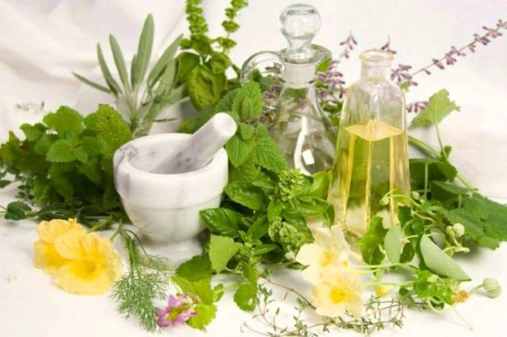 Травяной сбор для похудения