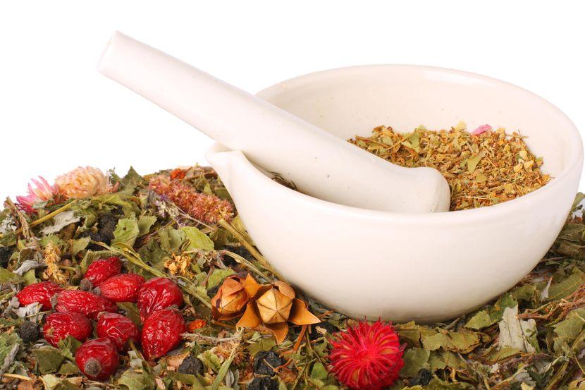 Эффективные травы для похудения