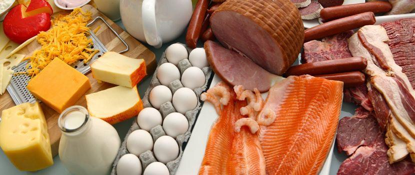 Белковая диета Дюкана «атака» — особенности применения