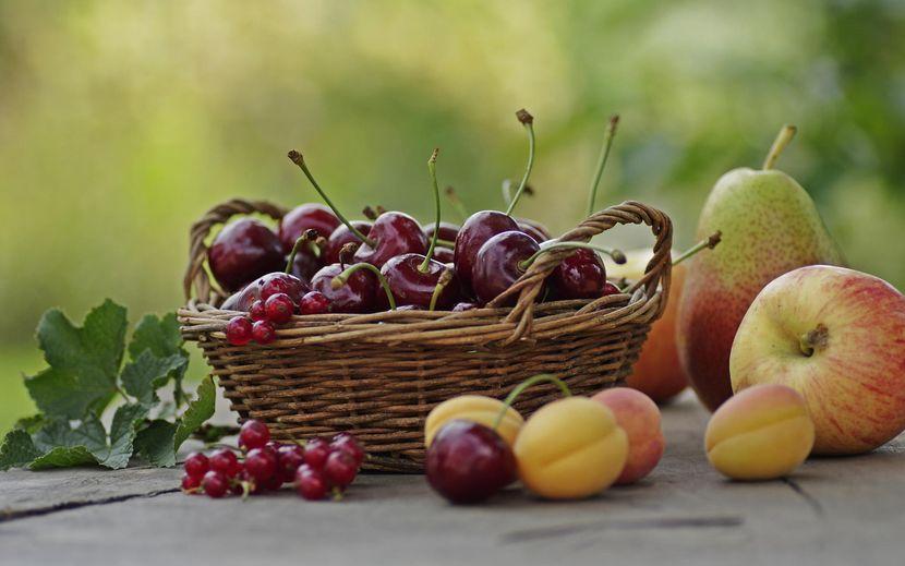 Польза от фруктов