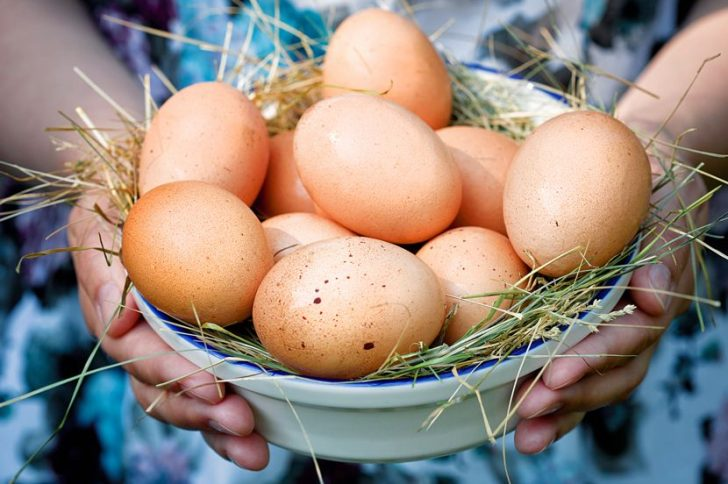 Вредны ли куриные яйца