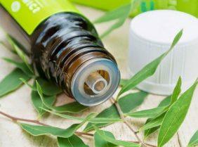 Эфирное масло чайного дерева для волос — секреты приготовления