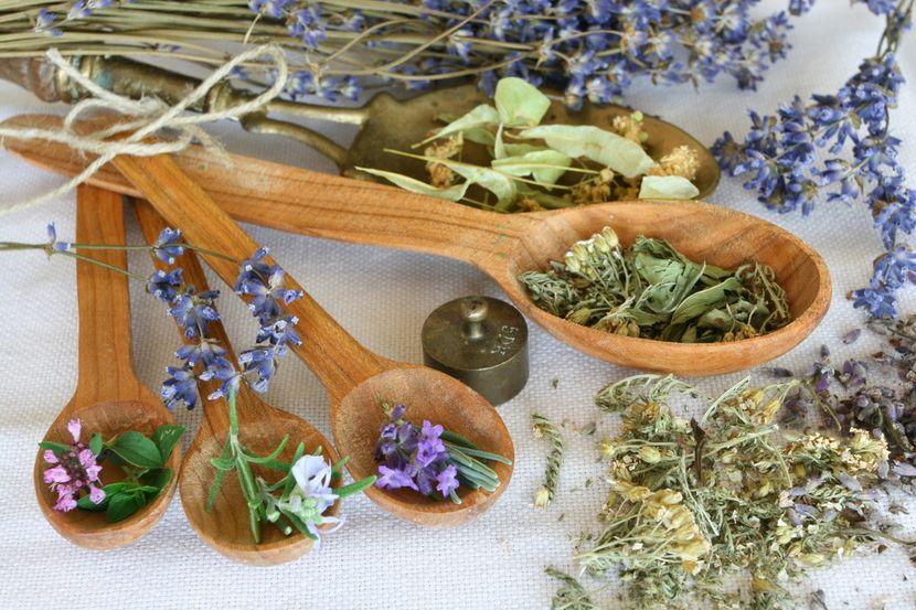 Лечебные травы для укрепления ногтей дома