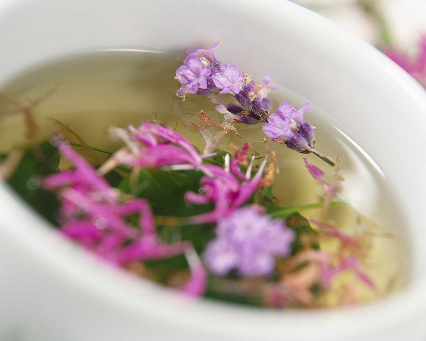 Какой чай для похудения лучше пить?