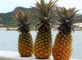 Настойка ананаса с водкой для похудения: правила приготовления и применения