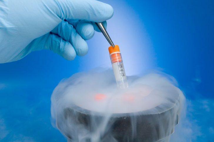 Какие возможности и перспективы дает банк спермы