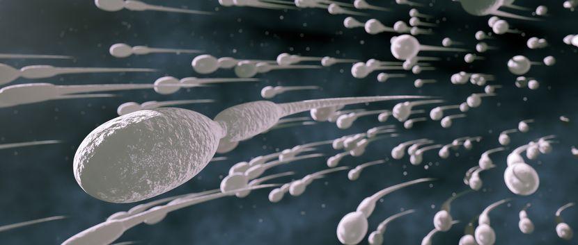 Сперма и фрукты фото 2 фотография