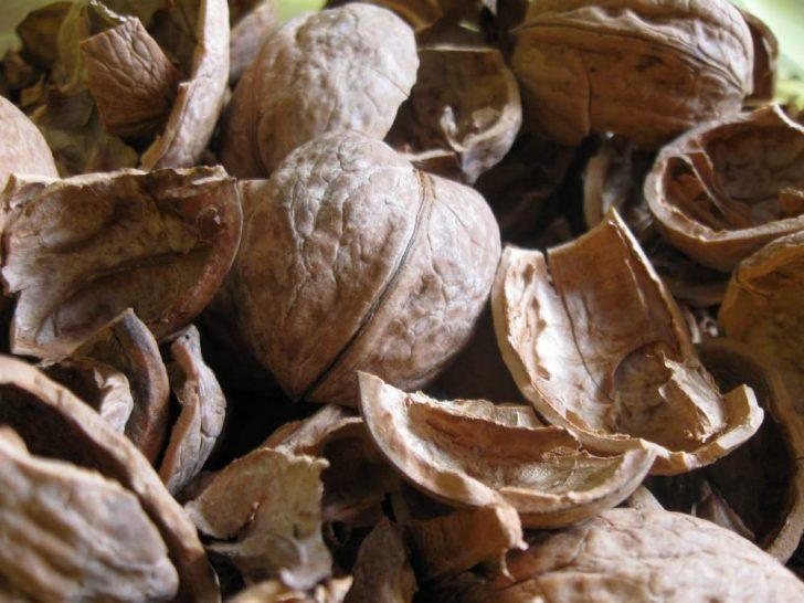 Нетрадиционная медицина в борьбе с сединой
