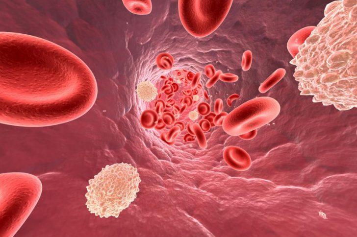 Статины от холестерина: польза и вред применения