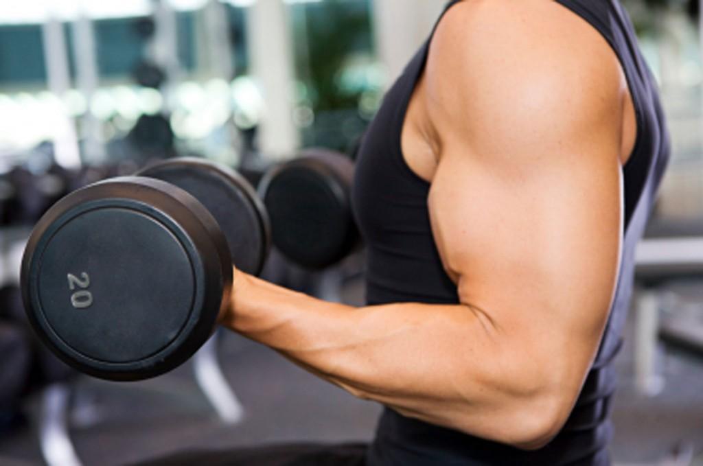 Упражнения для развития внутренней части бицепса