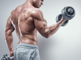 Почему болит бицепс после тренировки?