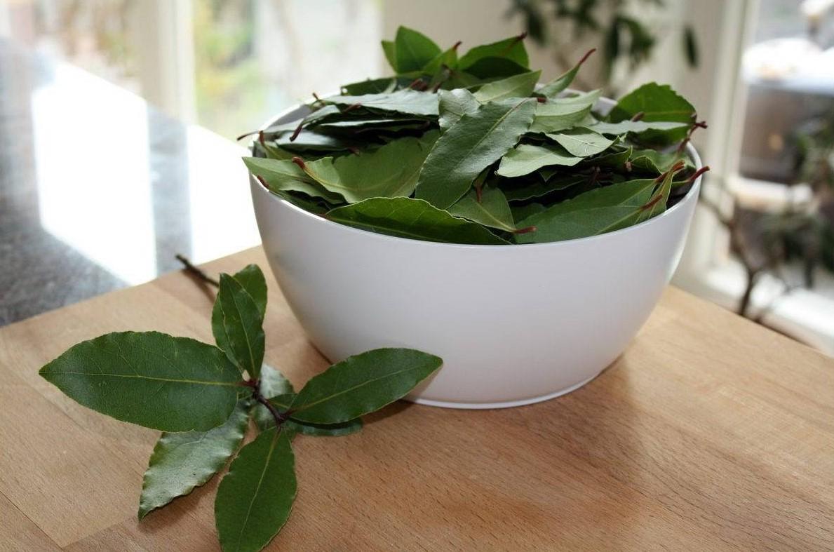 Как осуществлять лечение псориаза в домашних условиях разными методами