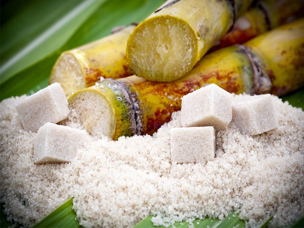 Что нужно знать о сахаре?
