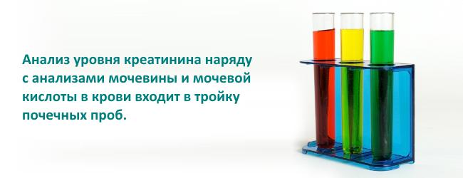 1455879445_kreatinin-v-analizah