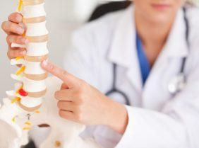 Дона — эффективный корректор костной и хрящевой ткани
