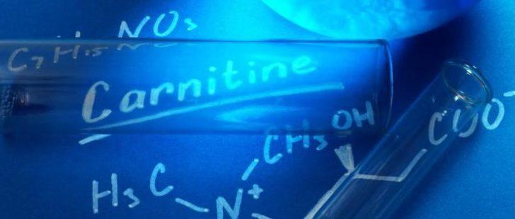 Л-карнитин – правильная поддержка организма