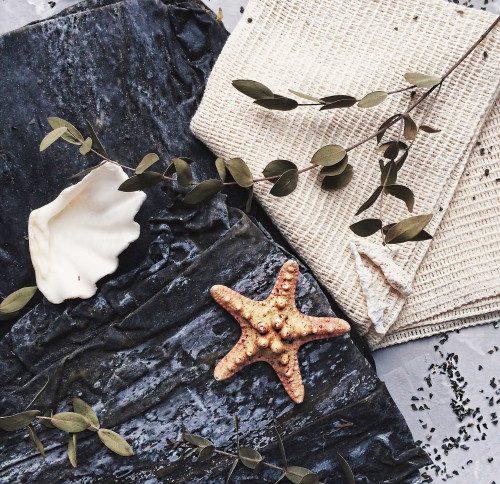 laminaria_japonica-500×500