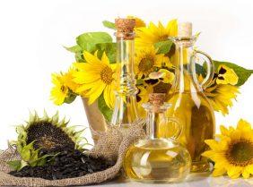 Польза и вред подсолнечного растительного масла