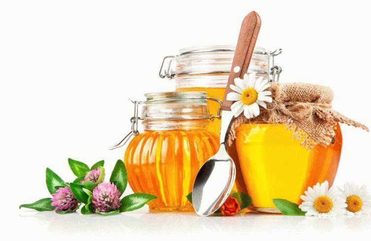 Лечебные и уникальные свойства меда
