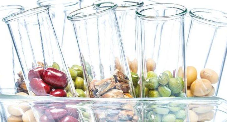 ДНК-диета для похудения: помогает ли анализ ДНК быстро похудеть