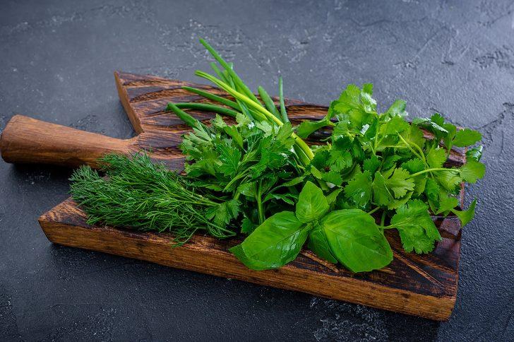 Свежая зелень — вкусно и полезно
