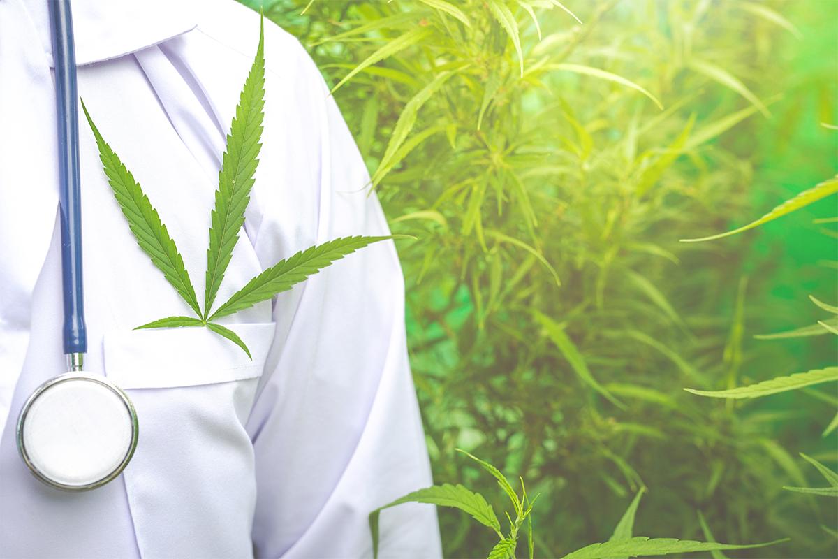 марихуана в медицине